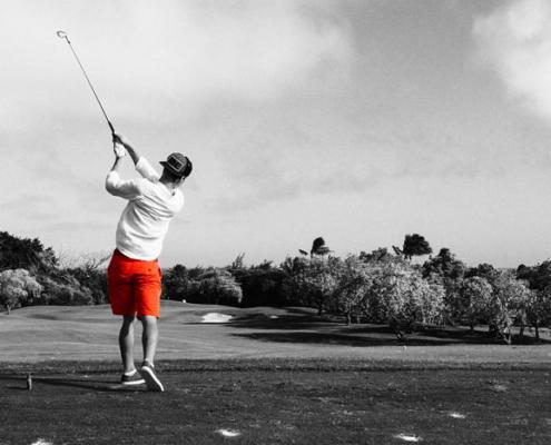 Golf & Homeoffice - Alerion