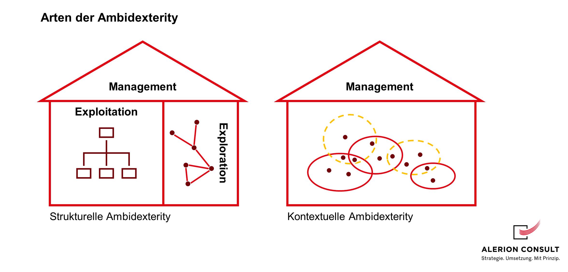 Arten der Ambidexterity
